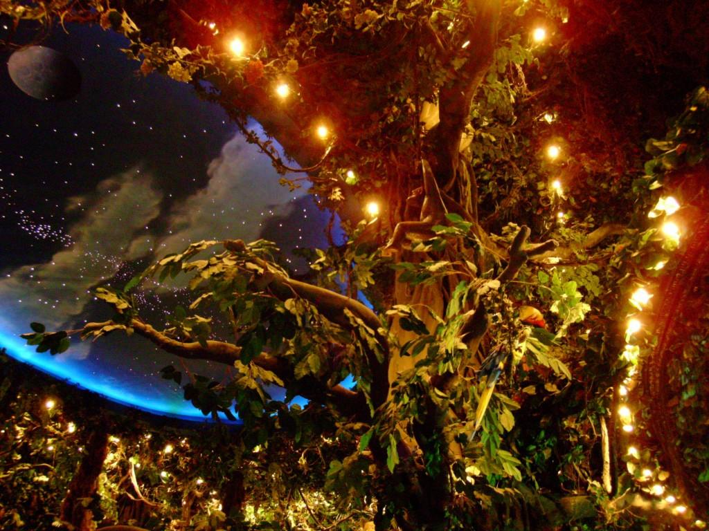 Rainforest Cafe @ MGM Grand. Foto en copyright: Parrotheadjeff.com