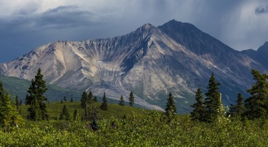 Porphyry Mountain