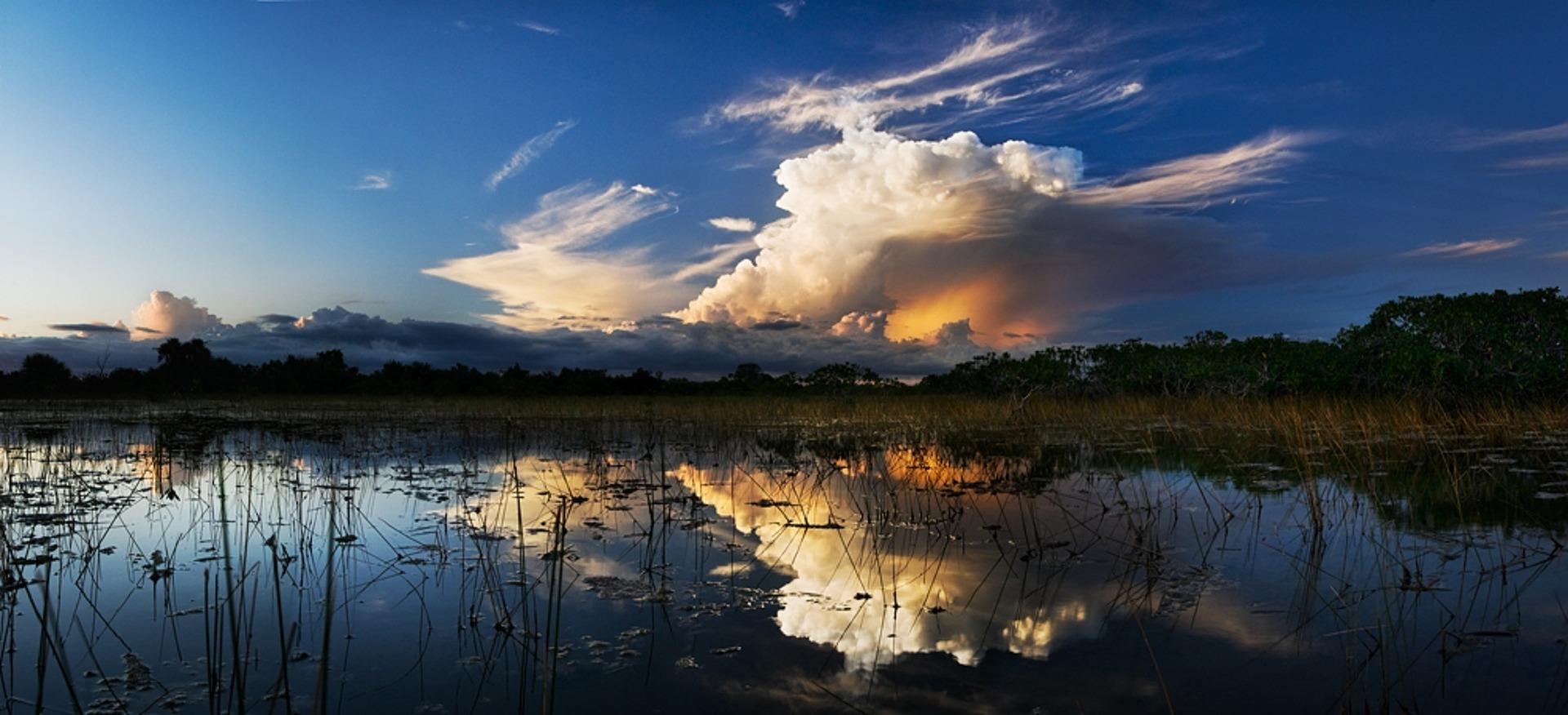 Everglades National Park: de groene schat van Florida