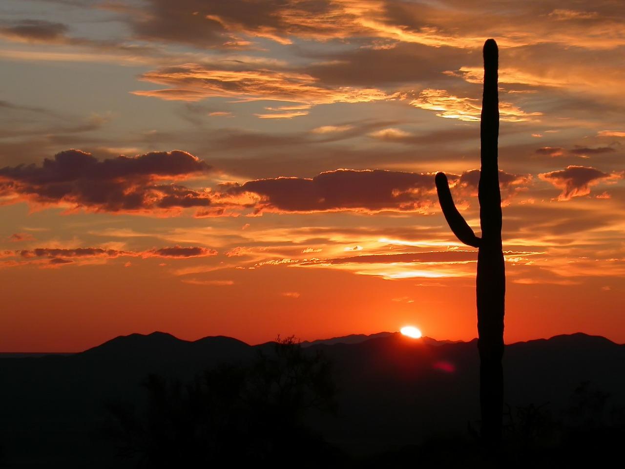 winterzon arizona