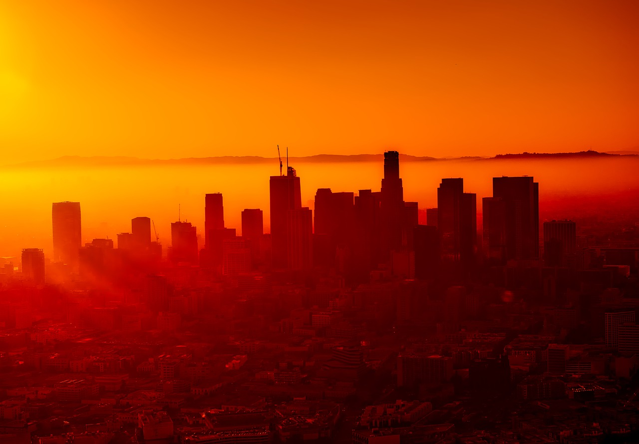 winterzon los angeles
